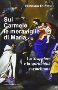 Copertina di 'Sul Carmelo le meraviglie di Maria'
