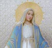 Immagine di 'Tavola Madonna Miracolosa stampa su legno - 10 x 14 cm'