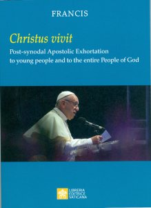 Copertina di 'Young People, the Faith and Vocational Discernment'