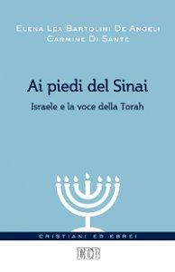 Copertina di 'Ai piedi del Sinai'