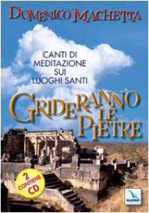 Copertina di 'Grideranno le pietre. Canti di meditazione sui luoghi santi. Con 2 CD Audio'