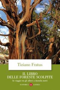 Copertina di 'Il libro delle foreste scolpite'
