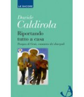 Riportando tutto a casa - Davide Caldirola