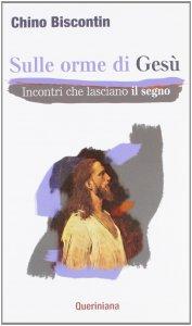 Copertina di 'Sulle orme di Gesù'