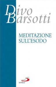 Copertina di 'Meditazione sull'esodo'