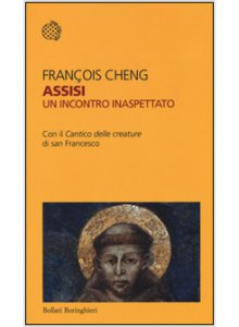 Copertina di 'Assisi. Un incontro inaspettato'