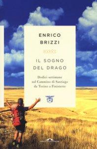 Copertina di 'Il sogno del drago. Dodici settimane sul Cammino di Santiago da Torino a Finisterre'