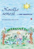 Novelle senesi di Ciro Marzocchi. 30 novelle raccolte a Siena nel 1879
