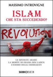 Copertina di 'Islam. Che sta succedendo?'