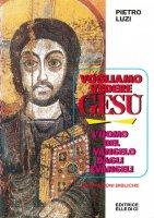 Vogliamo vedere Gesù. L'uomo del vangelo dagli evangeli. Meditazioni bibliche - Pietro Luzi