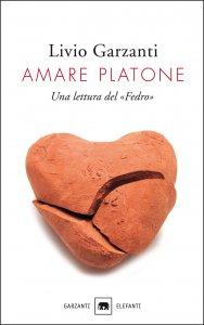 Copertina di 'Amare Platone'