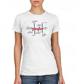 Copertina di 'T-shirt 10 comandamenti - Taglia L - DONNA'