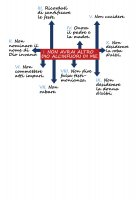Immagine di 'T-shirt 10 comandamenti - Taglia L - UOMO'