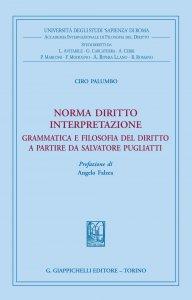 Copertina di 'Norma diritto interpretazione'
