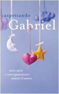Copertina di 'Aspettando Gabriel. Nove mesi e centoquarantotto minuti d'amore'