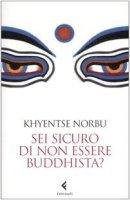 Sei sicuro di non essere buddhista? - Norbu Khyentse (Rinpoche)