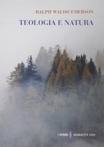 Copertina di 'Teologia e natura'