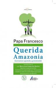 Copertina di '«Querida Amazonia»'