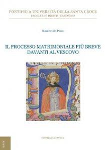 Copertina di 'Il processo matrimoniale più breve davanti al Vescovo'