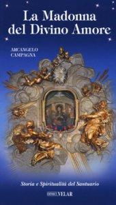 Copertina di 'La Madonna del Divino Amore. Storia e spiritualità del santuario'