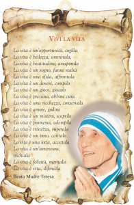 "Copertina di 'Tavoletta sagomata ""Vivi la vita""'"