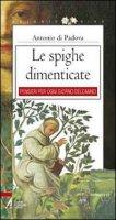 Le spighe dimenticate - Antonio di Padova (sant')