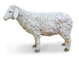 Copertina di 'Pecora testa alta Linea Martino Landi - presepe da 120 cm'