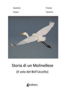 Copertina di 'Storia di un molinellese (Il volo del Bell'Uccello)'