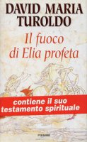 Il fuoco di Elia profeta - Turoldo David M.