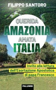 Copertina di 'Querida Amazonia Amata Italia'