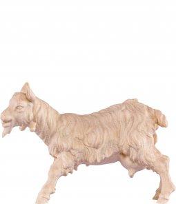 Copertina di 'Capra B.K. - Demetz - Deur - Statua in legno dipinta a mano. Altezza pari a 12 cm.'