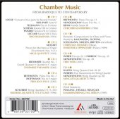 Immagine di 'Chamber music - From baroque to contemporary music'