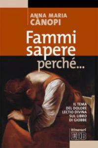 Copertina di 'Fammi sapere perché... Il tema del dolore. Lectio divina sul libro di Giobbe'