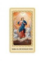"""Immaginetta plastificata con preghiera """"Maria che scioglie i nodi"""" - dimensioni 6x10 cm"""