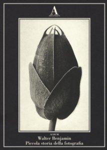 Copertina di 'Piccola storia della fotografia. Ediz. illustrata'