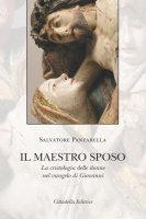 Il maestro sposo - Salvatore Panzarella