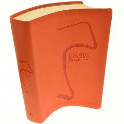 Copertina di 'Bibbia francescana'