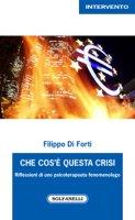 Che cos'è questa crisi - Filippo Di Forti