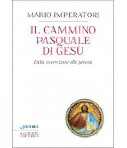 Copertina di 'Il cammino pasquale di Gesù'