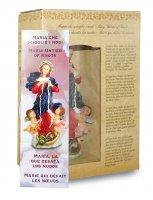 Immagine di 'Statua di Maria che scioglie i nodi da 12 cm in confezione regalo con segnalibro in IT/EN/ES/FR'