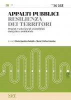 APPALTI PUBBLICI 10 - Resilienza dei territori - Maria Agostina Cabiddu,  Maria Cristina Colombo