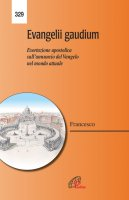 Evangelii gaudium. Esortazione Apostolica - Francesco (Jorge Mario Bergoglio)