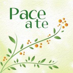 Copertina di 'Pace a te!'