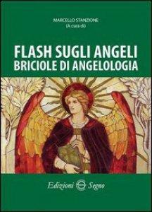 Copertina di 'Flash sugli angeli, briciole di angeologia'