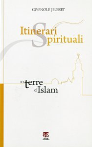 Copertina di 'Itinerari spirituali in terre d'Islam'