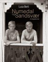 Numedal og Sandsvær. En fotografisk reise. Ediz. illustrata - Berti Luca