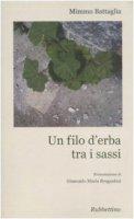 Un filo d'erba tra i sassi - Battaglia Mimmo