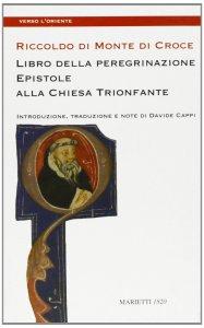 Copertina di 'Libro della peregrinazione. Epistole alla Chiesa trionfante'