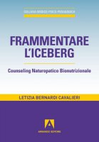 Frammentare l'iceberg - Bernardi Letizia