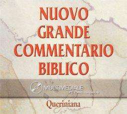 Copertina di 'Nuovo grande commentario biblico. CD-ROM'